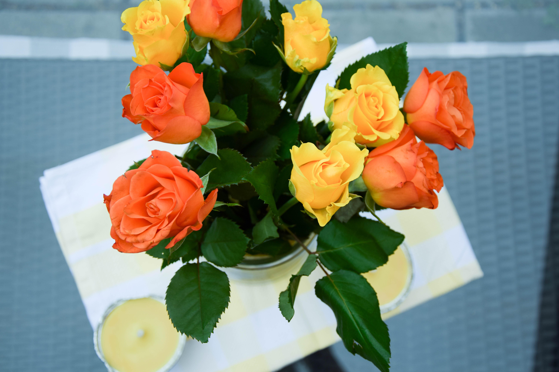 Rosen Orange und Gelb