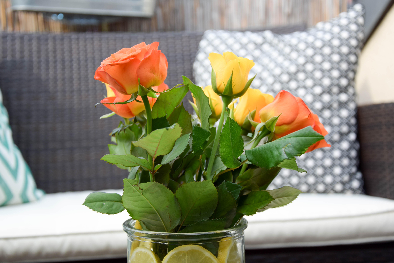 DIY Zitronen Vase